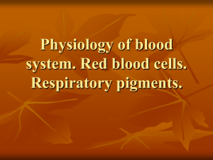 Lecture 12. Physiology of blood system. Red blood cells.Respiratory