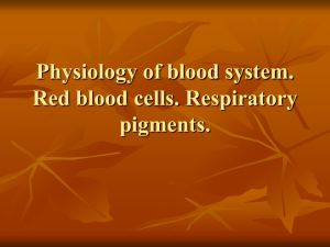 Physiology of blood system. Red blood cells. Respiratory pigments