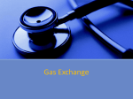 Gas Exchange - IB