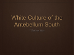 White Culture of the Antebellum South