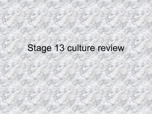 Stage 13 culture review