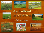 Agricultural Improvement Lucy Huang