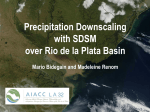 Precipitation downscaling with SDSM over Rio de la Plata basin