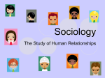 Sociology - Mr Miller's Class Page