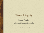 Tissue Integrity
