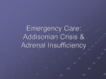 Emergency Care: Thyroid Storm and Addisonian Crisis