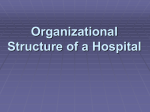 Organizational Structure of a Hospital