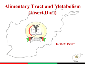 EO 003.01 - Part 17 - The Alimentary Tract and Metabolism