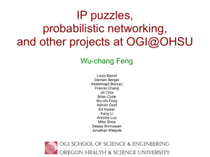 IP puzzles probabilistic networking and other projects at