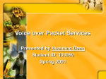 Voice over Packet Services