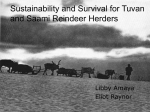 Sustainability and Survival for Tuvan and Saami
