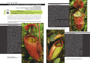 new species of Carnivorous Plants