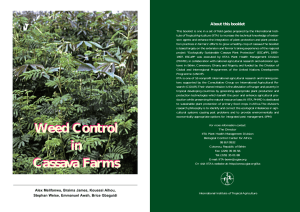 Weed control in cassava farms