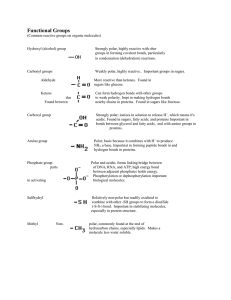 Functional Groups List