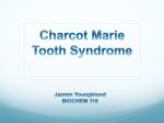 Jazmin Youngblood - Charcot Marie Tooth Syndrome