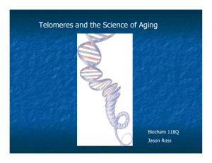Telomeres and the Science of Aging