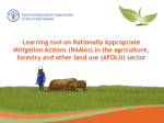 Learning tool on Nationally Appropriate Mitigation Actions in agriculture, forestry and other land use sector