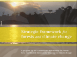Collaborative Partnership for Forests (CPF) Strategic Framework for Forests and Climate Change