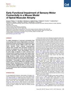 Early Functional Impairment of Sensory-Motor Connectivity in a Mouse Model of Spinal Muscular Atrophy