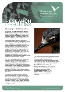 The endangered Bush Stone-curlew (PDF File 83.8 KB)