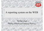 A reporting system on the WEB