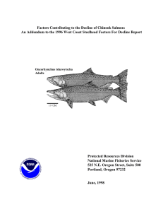 Factors Contributing to the Decline of Chinook Salmon: