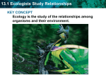 13.1 Ecologists Study Relationships KEY CONCEPT
