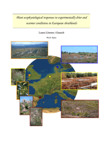 Plant ecophysiological responses to experimentally drier and  L