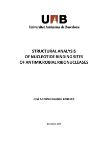 STRUCTURAL ANALYSIS  OF