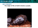12.3 Origin of Life KEY CONCEPT