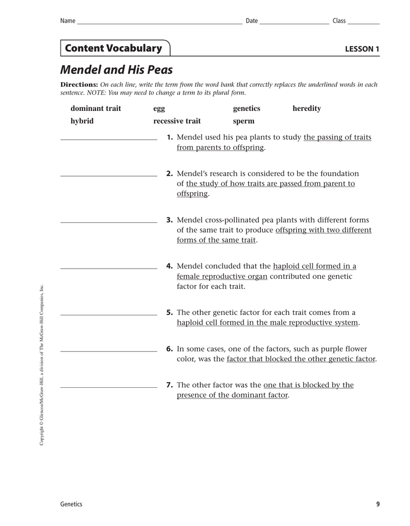 Mendel and His Peas Content Vocabulary LESSON 1 dominant trait – Mendel Worksheet