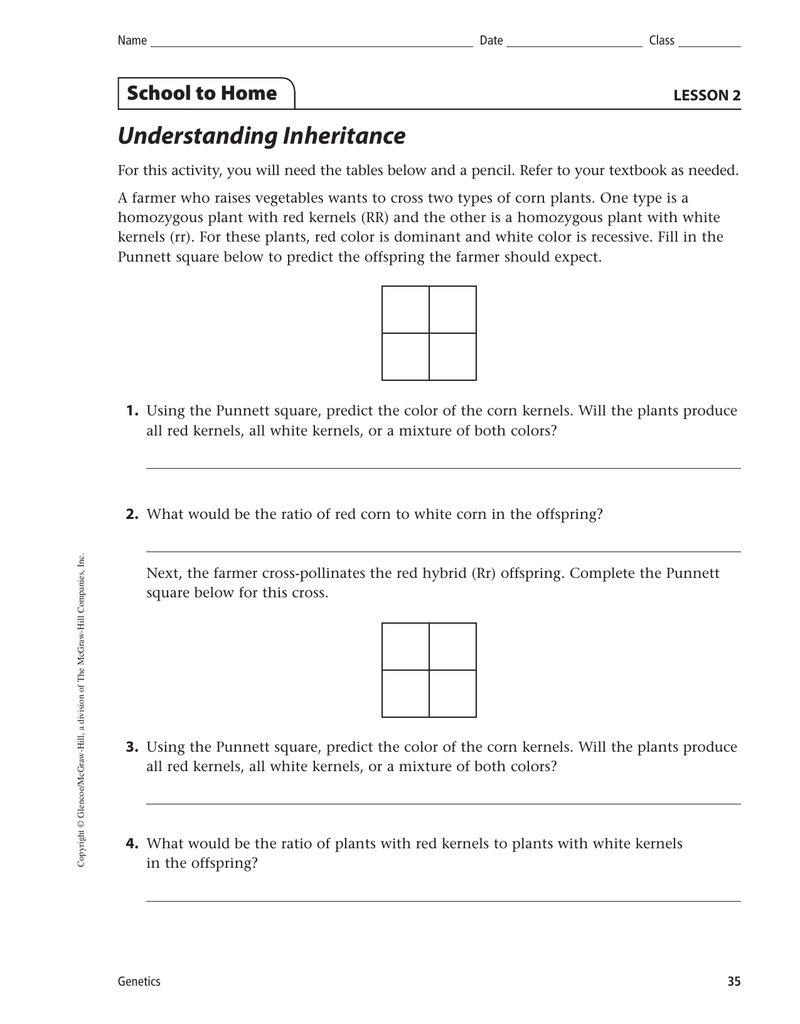 Worksheets Dihybrid Crosses Worksheet Answers understanding inheritance school to home lesson 2