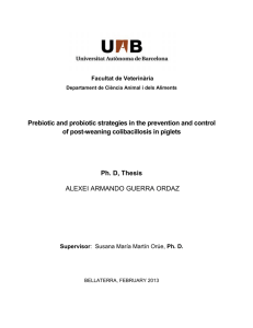 Prebiotic and probiotic strategies in the prevention and control