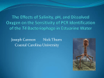 T4 Bacteriophage in Estuarine Water (Joseph Cannon and Nick Thurn, CCU)
