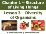 Chapter 1 – Structure of Living Things Lesson 3 – Diversity of Organisms
