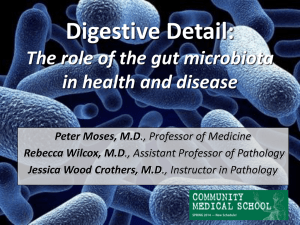 Digestive Detail: The role of the gut microbiota in health and disease