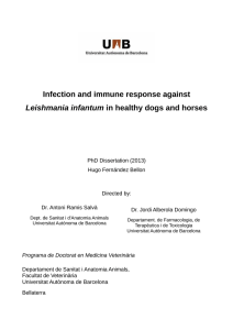Infection and immune response against Leishmania infantum