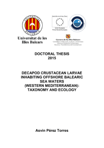 DOCTORAL THESIS 2015  DECAPOD CRUSTACEAN LARVAE