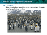11.3 Other Mechanisms of Evolution KEY CONCEPT which populations evolve.