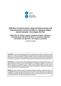 Detection of marine toxins using cell-based assays and