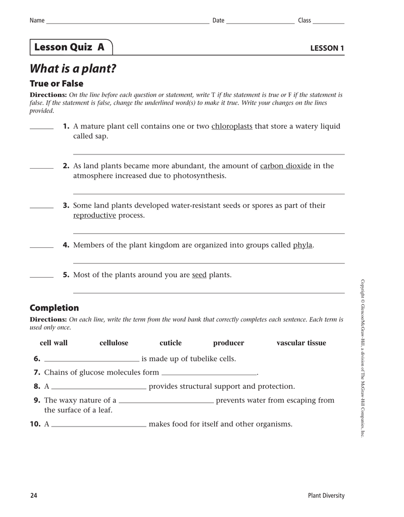 What is a plant? Lesson Quiz A True or False LESSON 1