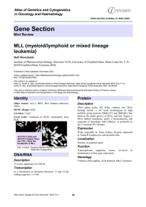 Gene Section MLL (myeloid/lymphoid or mixed lineage leukemia) Atlas of Genetics and Cytogenetics