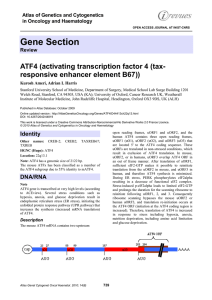 Gene Section ATF4 (activating transcription factor 4 (tax responsive enhancer element B67)) -