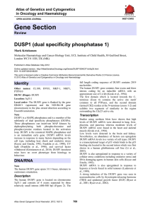 Gene Section DUSP1 (dual specificity phosphatase 1) Atlas of Genetics and Cytogenetics