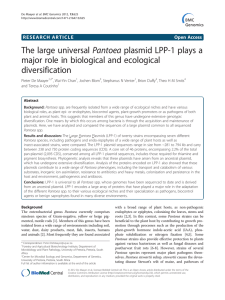 The large universal Pantoea plasmid LPP-1 plays a diversification