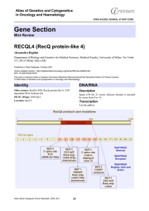 Gene Section RECQL4 (RecQ protein-like 4) Atlas of Genetics and Cytogenetics