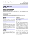 Gene Section JAG2 (human jagged2) Atlas of Genetics and Cytogenetics