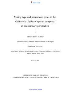 Mating type and pheromone genes in the species complex: an evolutionary perspective