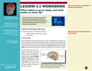 LESSON 4.3 WORKBOOK What makes us go to sleep, and what