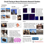 Circuit-Tracing at Neuro-Electronics Research Flanders Introduction Outcomes